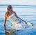 Wedding Dress Trashing | Caroline Mitic | Graphic Design